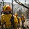 Schutzbrille VFT1 zu Waldbrandhelm VALLFIREST