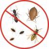 Insektizid Ficam D